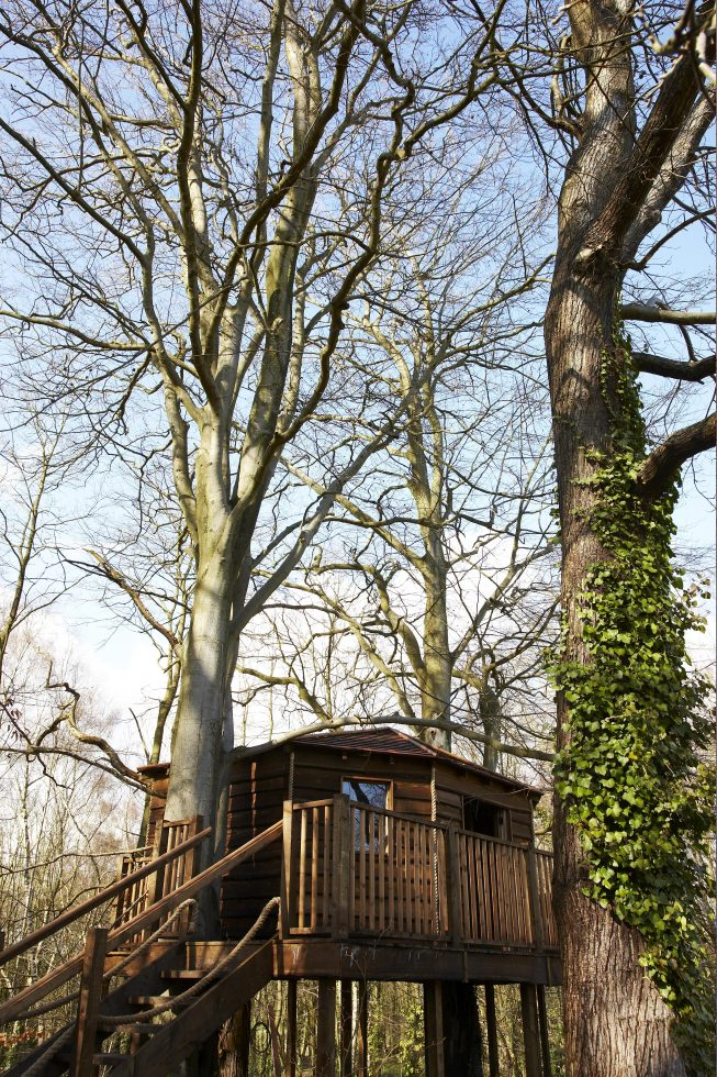 Tree house meeting room at New Place Hotel