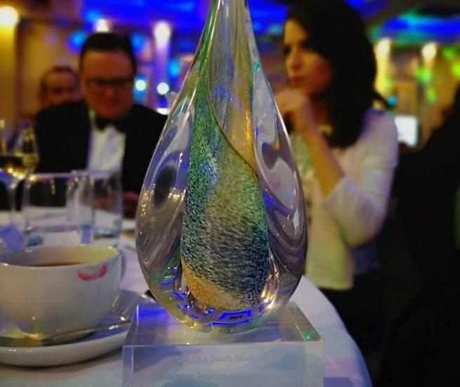 Business South Award 2019